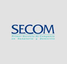 logo-secom-color-215x206